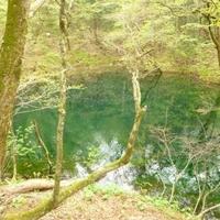 十二湖おすすめ散策コースの写真
