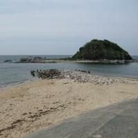 勝馬海水浴場の写真