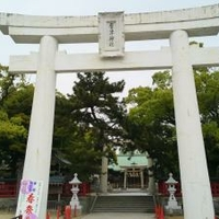 唐津神社の写真