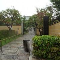南蔵院の写真