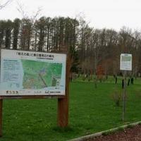 鹿公園の写真