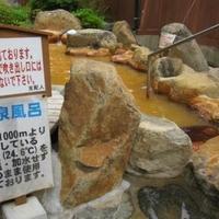 巌立峡ひめしゃがの湯の写真