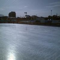 川口市立グリーンセンターの写真