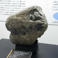 三笠市立博物館の写真
