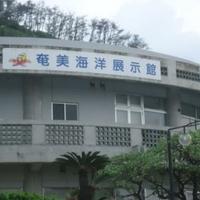 奄美海洋展示館の写真