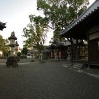 春日神社の写真