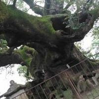 青幡神社の写真