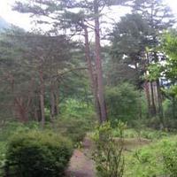 川治ふれあい公園の写真