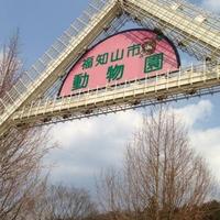 福知山市動物園の写真