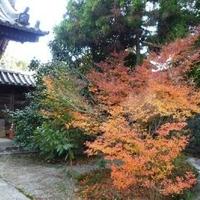 広泰寺の写真