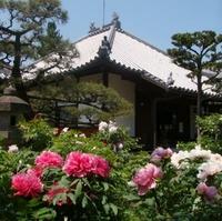 石光寺の写真