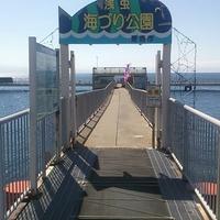 青森市浅虫海釣り公園の写真