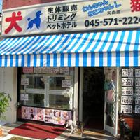 わんちゃんねこちゃんランド 横浜矢向店の写真
