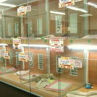 フレンドハウス南船橋店の写真