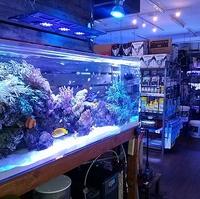 アクアギャラリーROSSO 新潟店の写真