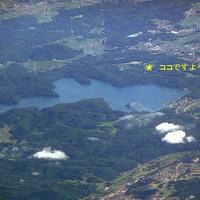 【観光農園】野尻湖ブルーベリーガーデンの写真