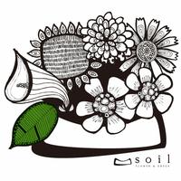 ソイル Soilの写真