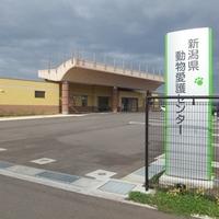 新潟県動物愛護センターの写真