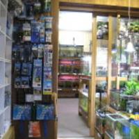 都屋商店ぷち・アクアショップM2の写真