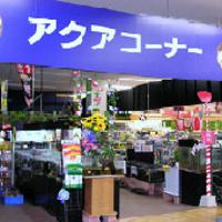 Aqua Proshop マナウス新習志野店の写真