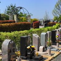 メモリアルローズガーデン善光寺加木屋別院の写真