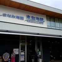 来島海峡サービスエリアの写真