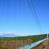 三島スカイウォークの写真