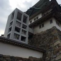名古屋城の写真
