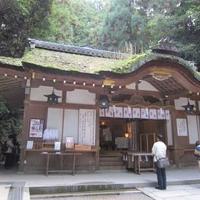 狭井神社の写真