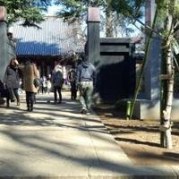 寛永寺の写真