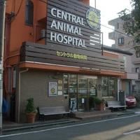 セントラル動物病院の写真