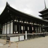 興福寺 東金堂の写真