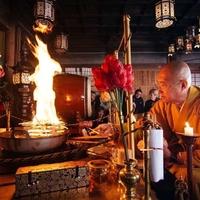高野山 熊谷寺の写真
