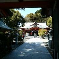 宮崎八幡宮の写真