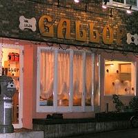 GALLOP(ギャロップ)の写真