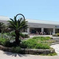 観音崎自然博物館の写真