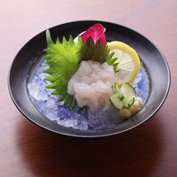 寿司・割烹 四六八ちゃ 富山駅前店の写真