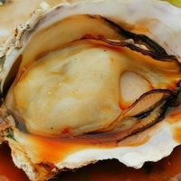 牡蠣王の写真