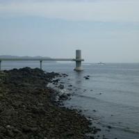 玄海海中展望塔の写真