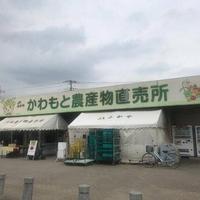 道の駅 かわもとの写真