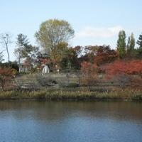 花博記念公園鶴見緑地の写真