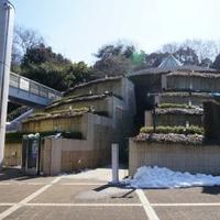 川崎市岡本太郎美術館の写真