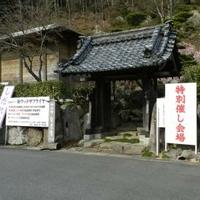 木の館豊寿庵の写真