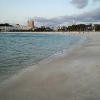 白良浜海水浴場の写真
