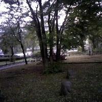 荒川公園の写真