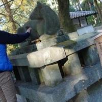 枚岡神社の写真