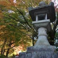 枚岡公園の写真