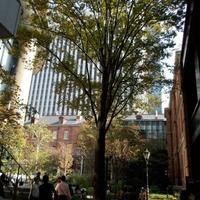 丸の内ブリックスクエアの写真