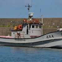 株式会社大徳漁業の写真