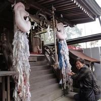 大山神社の写真